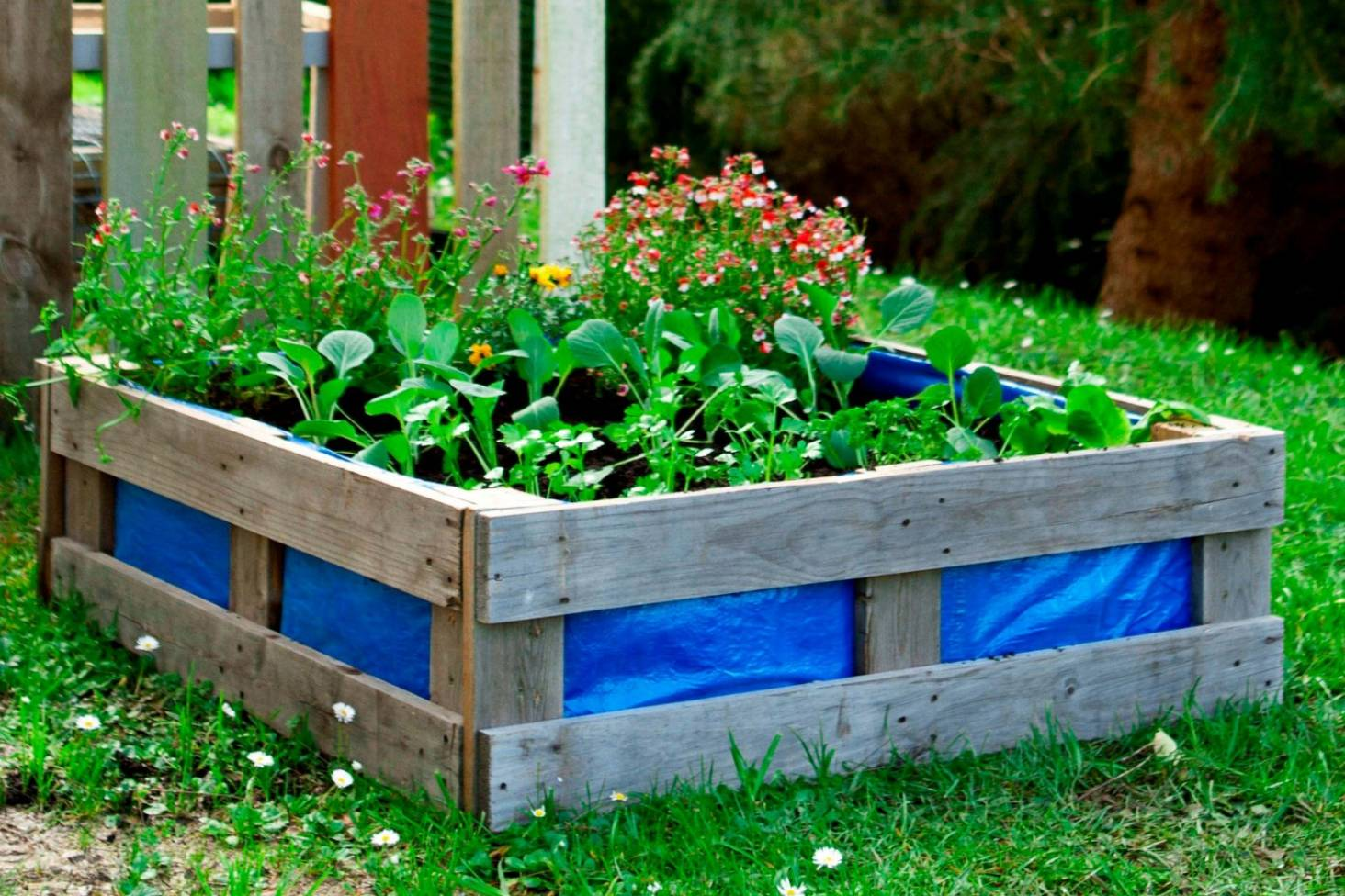 Diy Build A Raised Vege Bed For 10 Stuff Co Nz
