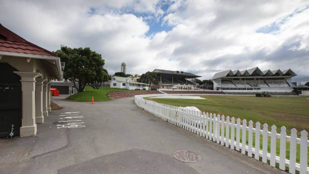 Cricket Wellington staff remain in limbo as 'ambitious' restructure confirmed