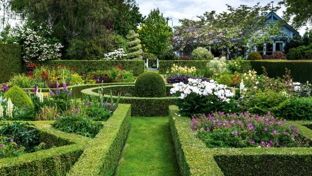 The ball at the heart of the knot garden is lonicera; the hedging at the end is pittosporum, as is the spiral topiary; ...