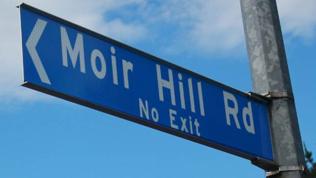 Moir Hill will be the centre of a proposed development removing pine forest and replanting with natives