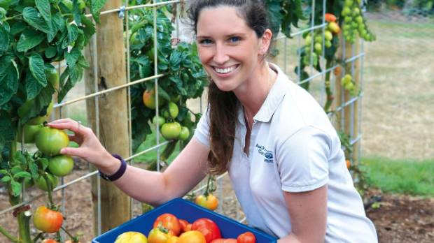 Auckland Botanic Gardens' tomato trial was coordinated by Emma Bodley (pictured) with data collection by Matthew Savage ...