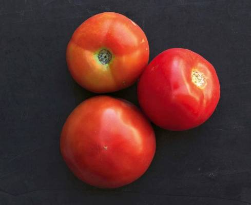 'Country Taste': With large red fruit, this F1 hybrid produced the highest yield by weight, with individual fruit ...