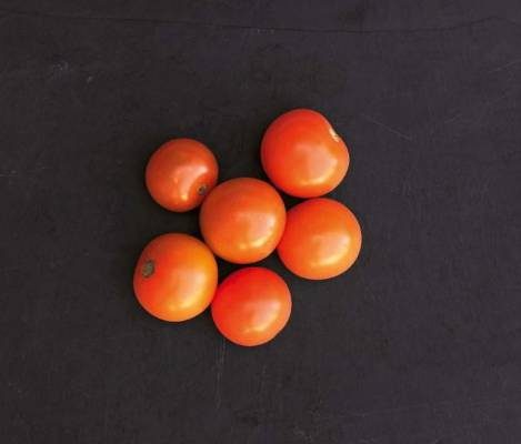 'Sungold': Fancy something other than red cherry tomatoes? This F1 hybrid had a respectable haul of small (10.3g) golden ...