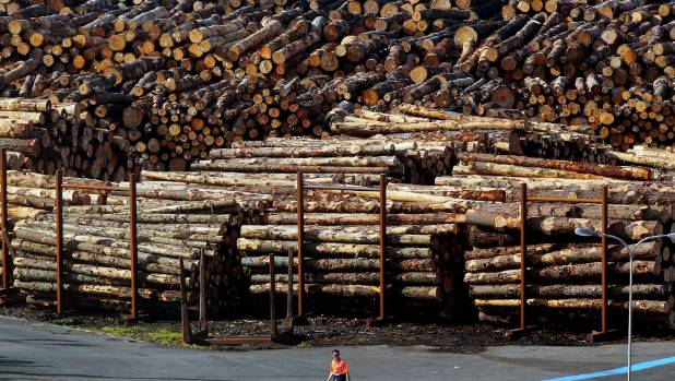 Increase in log exports from Port Taranaki will help shareholder returns