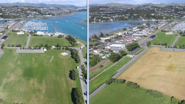 To prepare for work on the field, the grass was sprayed at   Ngati Toa Domain so it can be cut and filled for the new ...