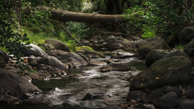 Researchers found 77 per cent of the pollution load nationwide came from smaller streams that do not require fencing.