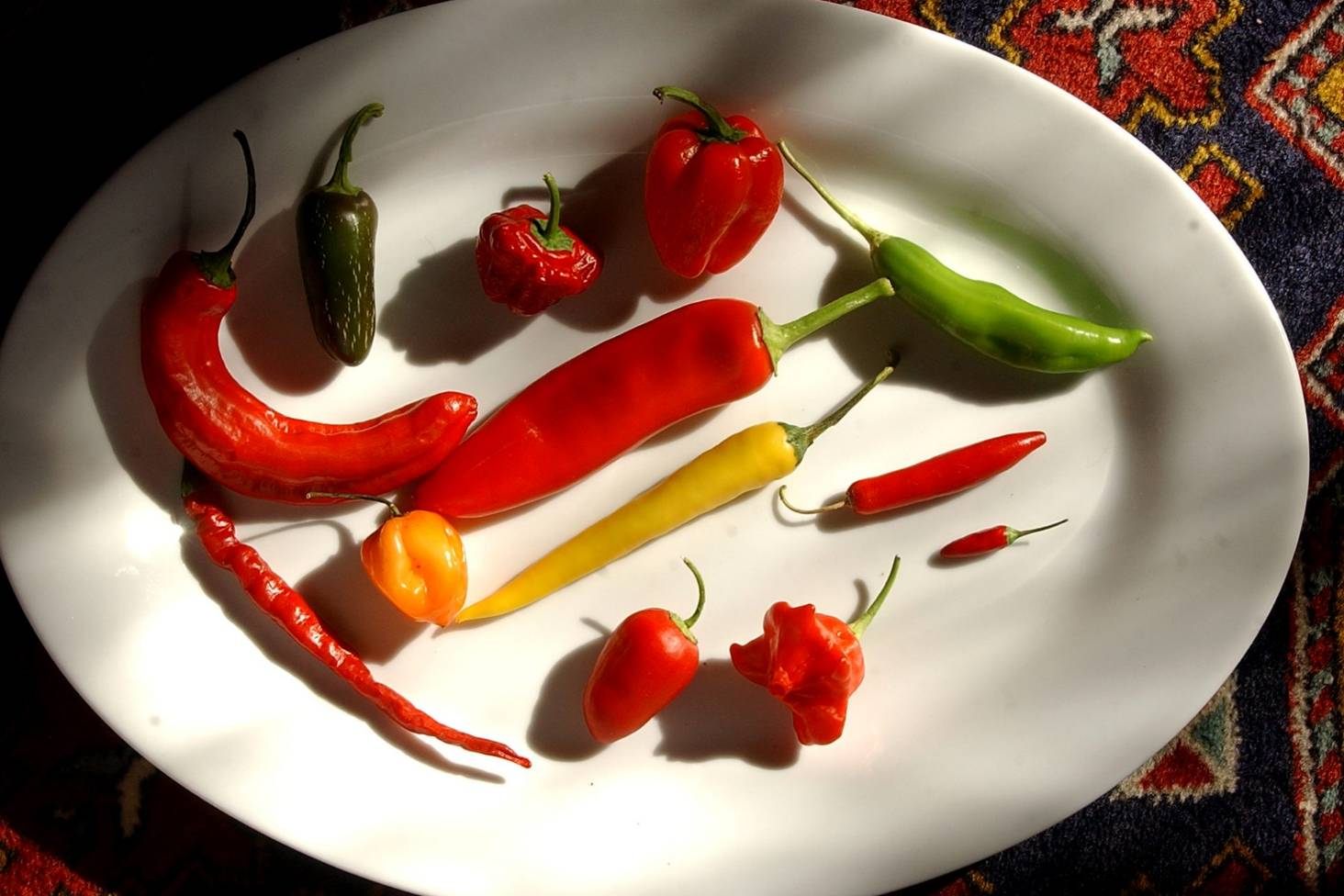 Chilli: plant, care, harvest & best varieties for New