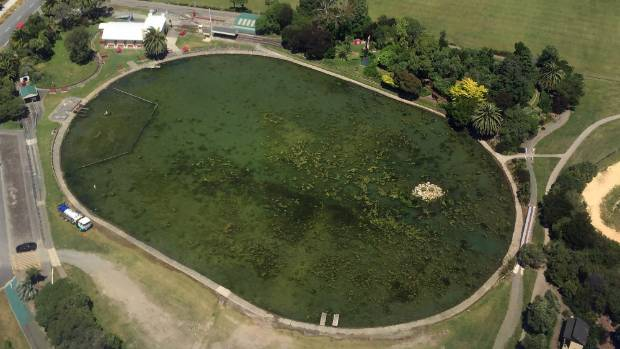 "An aerial photo shows the small ""island"" used to pipe Tahunanui's stormwater into the pond."