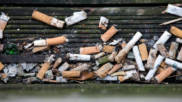 Wellington City Council's move to ban the dropping cigarette butts has been ridiculed by a top council employee.