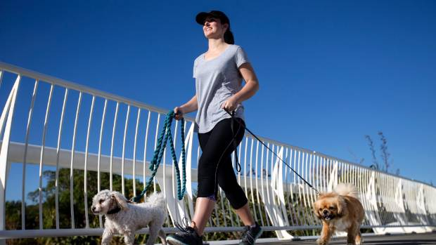 Dogs are welcomed to walk on leash on the coastal walkway at New Plymouth. Here, Tayla Willetts walks Jeff and Pepa  ...