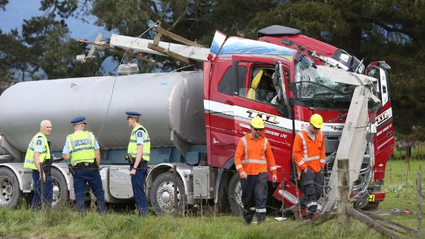 Power was cut to two homes in the Wairau Valley after the accident.