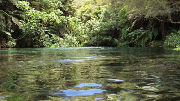 Having a state owned water exporter would allow all New Zealanders to benefit from this abundant natural resource.