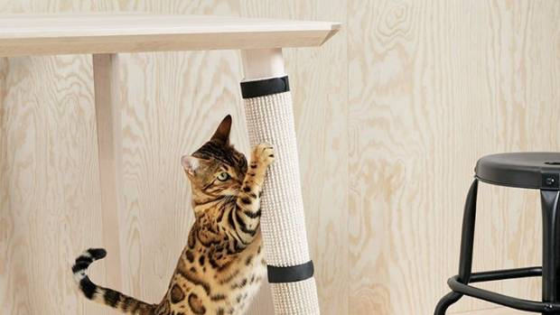 The Lurvig cat scratching mat could be yours for US$5.99 (NZ$8.47).