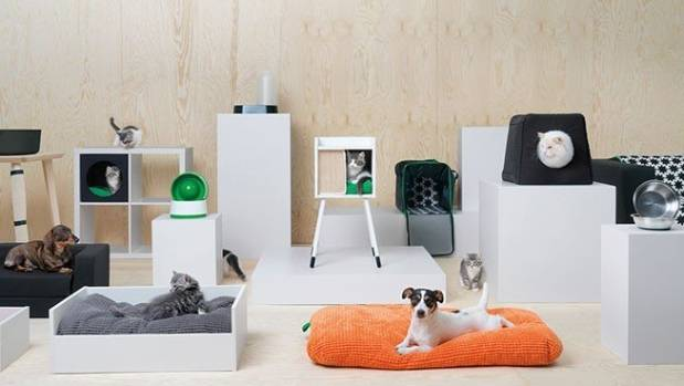Hold your horses, now you can assemble flat-pack furniture for your pooch too.