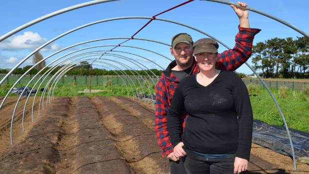 Jarrod and Michelle Busby have built a 20-metre long 'caterpillar' tunnel for growing tomatoes.