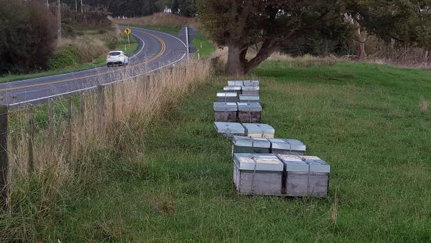 Tom Cloke highlighted bee hives close to roads as a driving hazard.