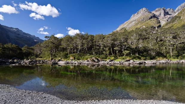"""Nelson Lakes National Park ranger Paul Dulieu was  """"absolutely blown away"""" by how many Te Araroa trampers have been ..."""