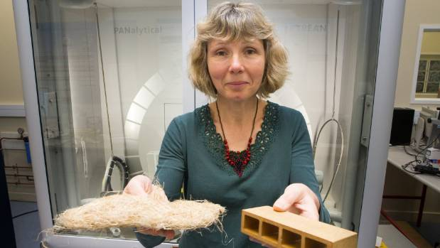 Kim Pickering has been researching biodegradable, bio-derived and recyclable composites for almost 20 years.