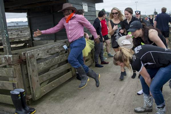 Competitors pass the baton - a gumboot - during the gumboot race.
