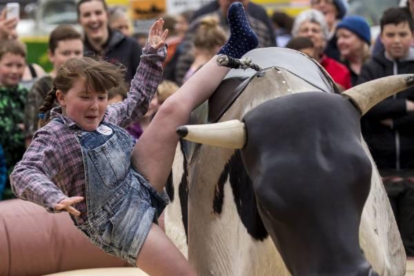 Skyla O'Flaherty gets tossed off the bucking bull.