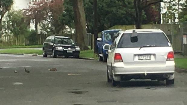Robbie Lane posted this photo of Melissa Harrop's car to a Christchurch Facebook page after seeing her hit the ducks.