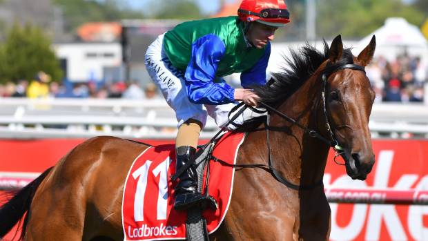 Johannes Vermeer outright Cup favourite