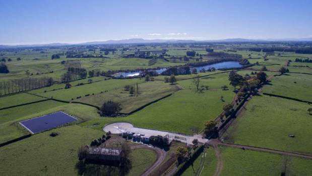 Bayleys Waikato salesman Mike Fraser-Jones says the property is ripe for lifestyle blocks.