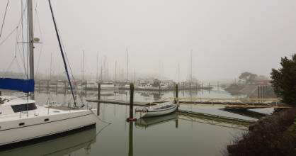 Nelson Marina looks mysterious in the mist.