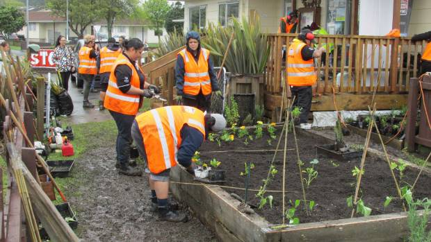 The students have been carrying out a range of work on the house's community vegetable garden for several weeks.