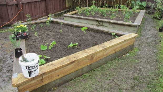 It includes three raised vegetable garden beds that were damaged earlier this year by a vehicle.