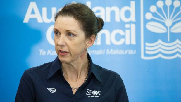 SPCA chief executive Andrea Midgen said the cows didn't need to be killed for displaying natural behaviours.