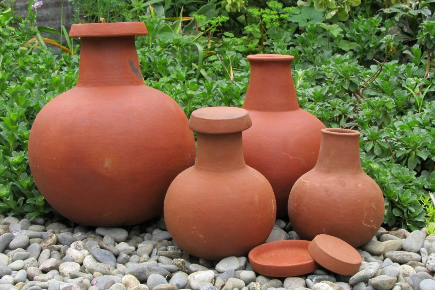 Olla pots: the low-tech solution to garden irrigation