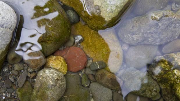 The river flows over stones at picturesque Gladstone Bridge.