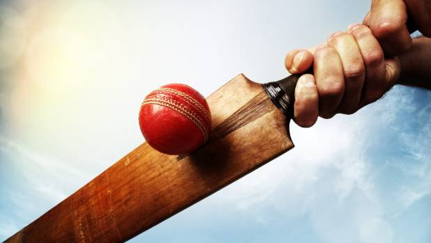 The player who sparked a mass team walk-off in a club cricket match has been stood down for six weeks.