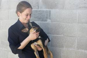 SPCA Waikato centre manager Laura Vander Kley warns people against adopting animals in the spur-of-the-moment.