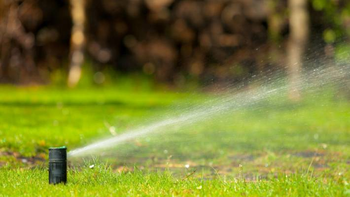 Water restrictions and patrols start across Wellington region