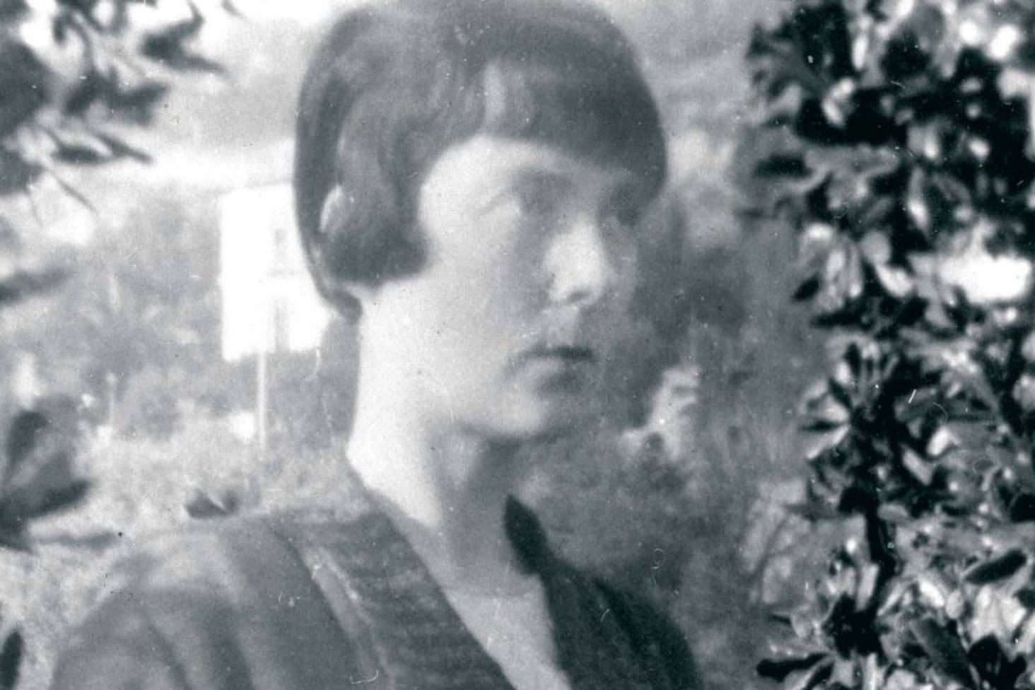 Flowers and plants of Katherine Mansfield's world | Stuff co nz