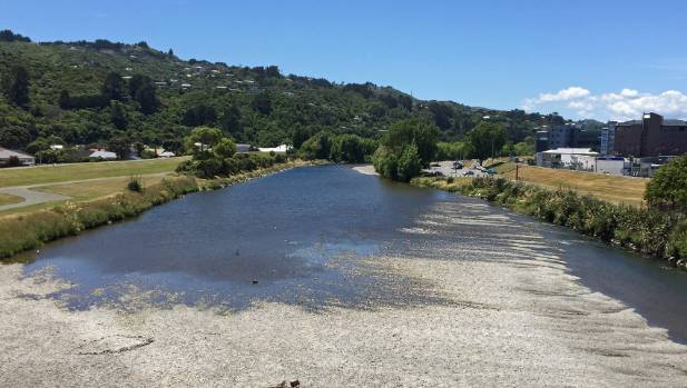 Toxic algae blooms have become more common concern for the Hutt River in recent years.