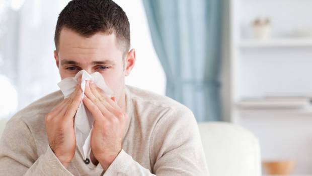 Regions like the Waikato, with a lot of grass and cows, make hay fever a nightmare for some.