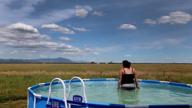 In the El Nino summer of 2015, a farmer's wife took a dip in the pool to escape the dry summer.