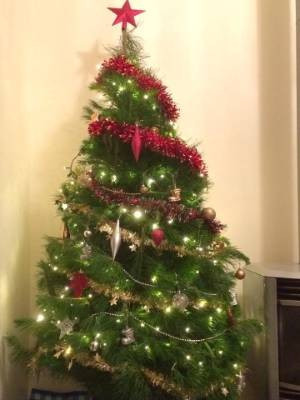 Best Fake Christmas Trees Nz Furniture Design For Your Home