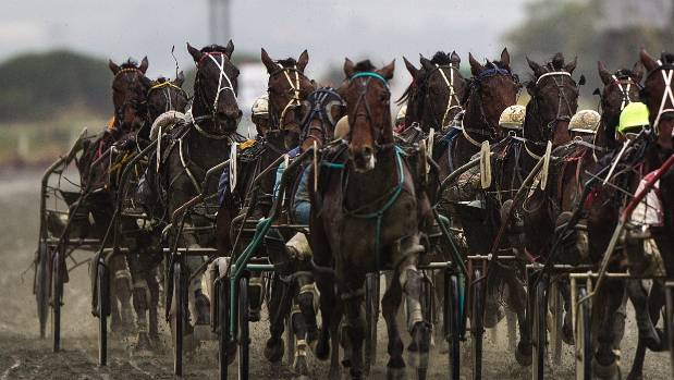 Qld man charged with harness race fixing