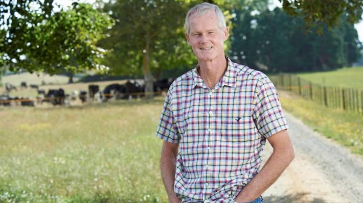 Mycoplasma bovis cow disease to cost farmers $278m | Stuff co nz