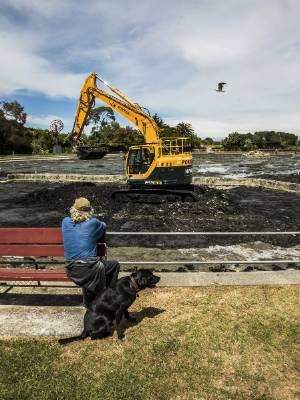 An onlooker watches machines clear sludge from the bottom of the Modellers Pond. The process is expected to take several ...