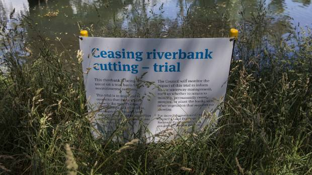 The Christchurch City Council started a trial of not mowing riverbanks last December. It is set to make the trial permanent.