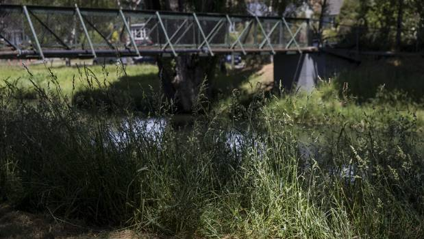 Some residents have complained the long riverbank grass, such as near Hansen Park in Opawa, looks scruffy.