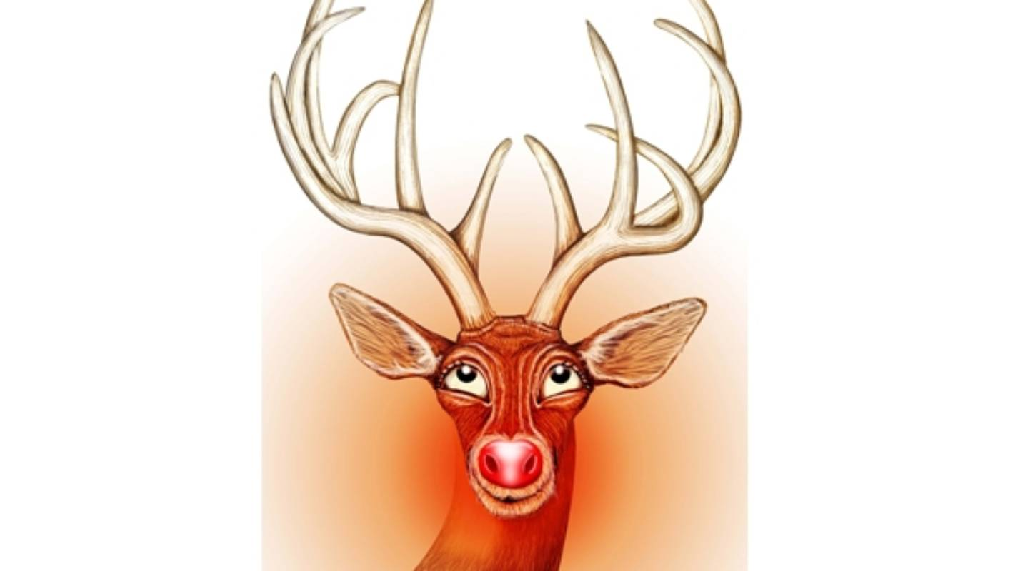 Rudolph Why Is Your Nose So Bright Scientists At Johns Hopkins University Have An Idea Stuff Co Nz