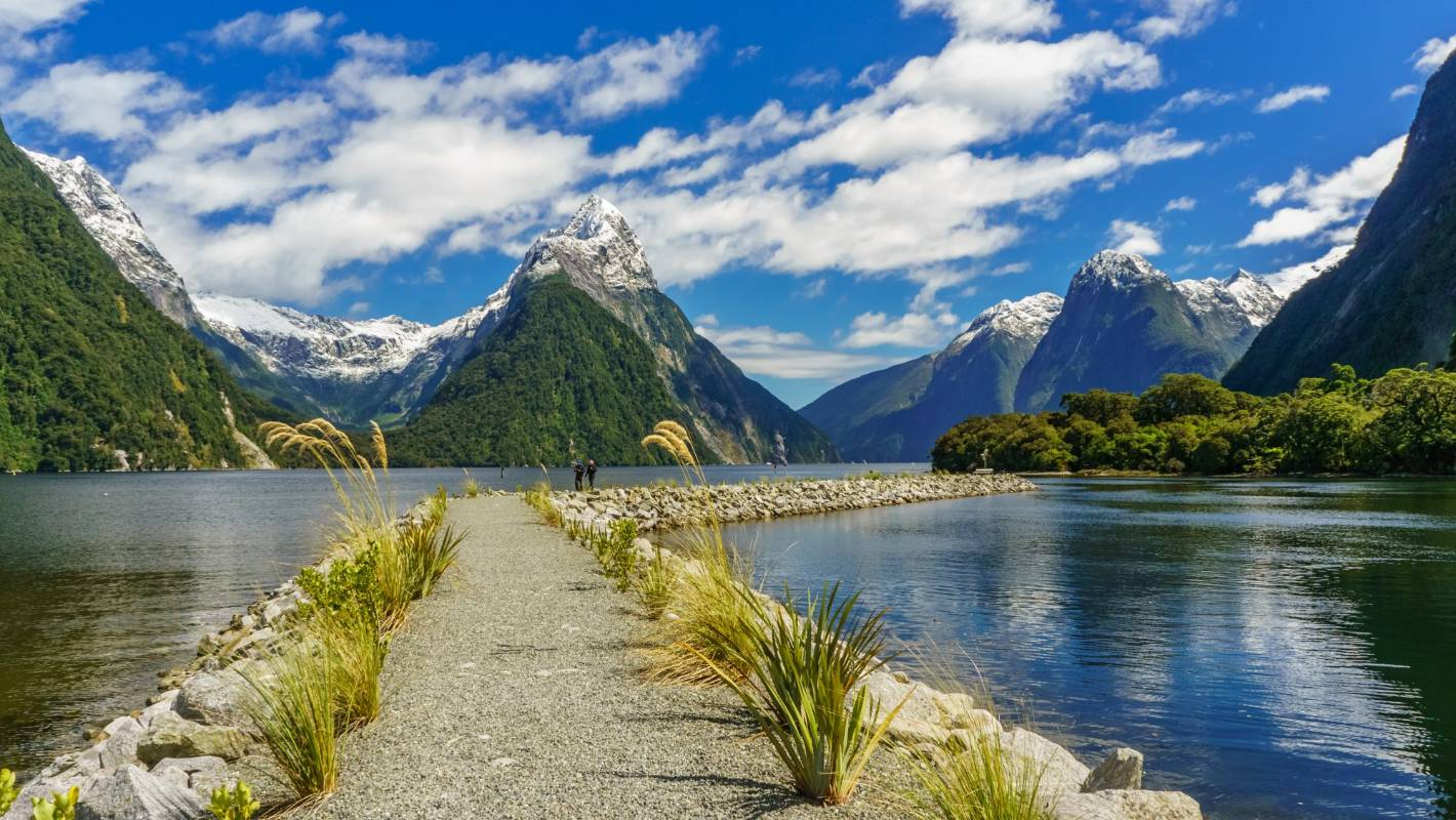 A well-beaten but sublime Milford Sound road trip