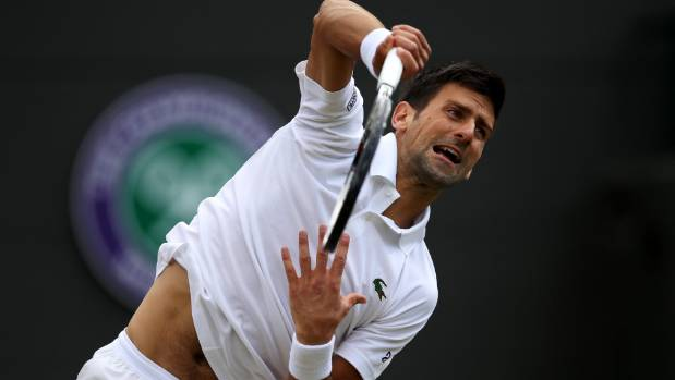Novak Djokovic has 12 tennis major titles to his name.