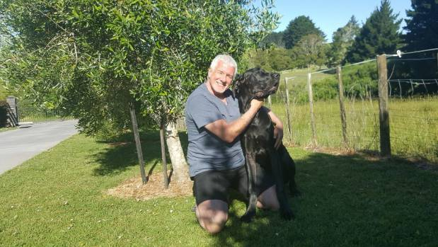 Gary Withers with Luther the great dane, aged 10 months.